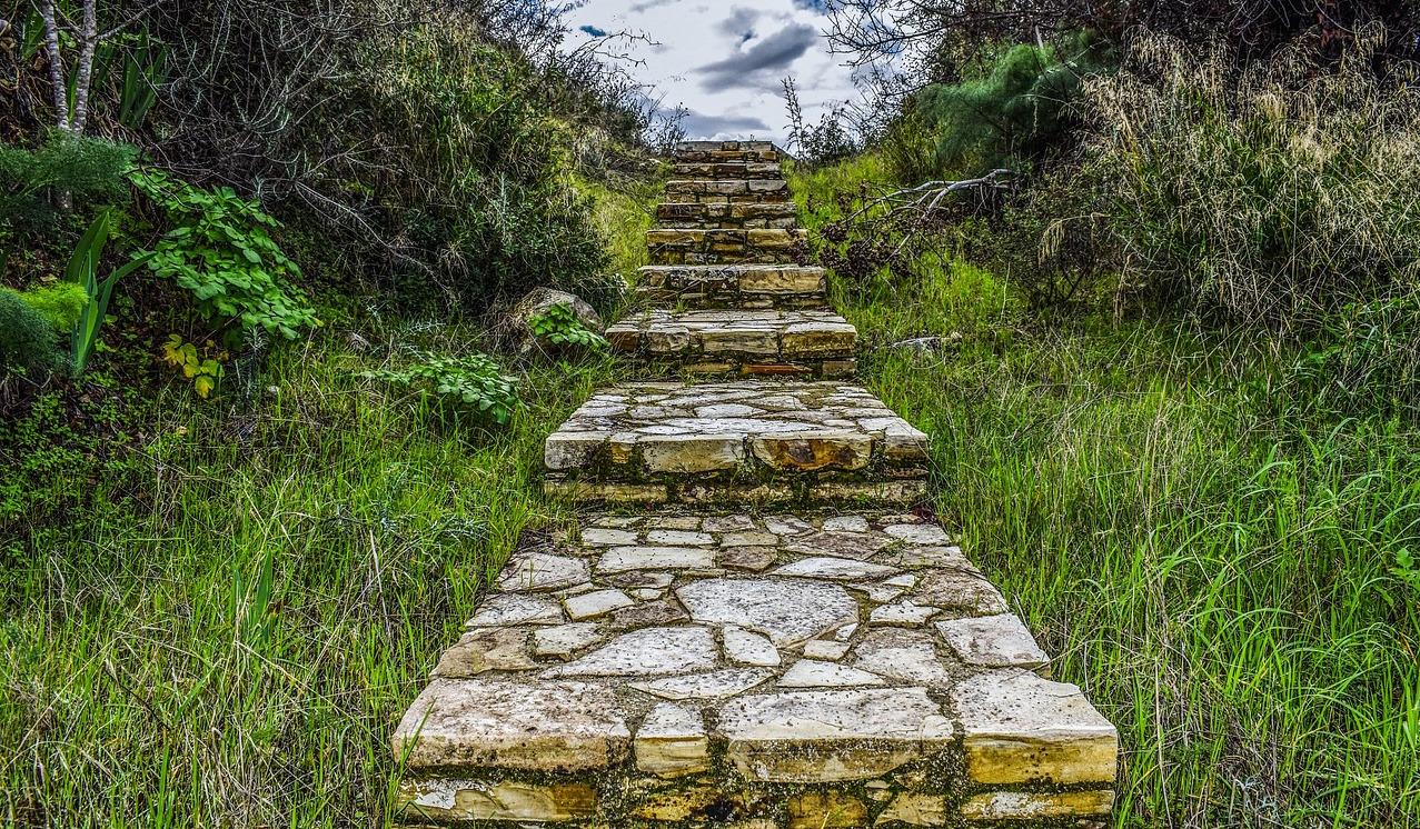 Stufen zur Intution